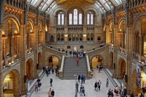 Hall di una galleria dotata di sistema Wi-Fi per musei